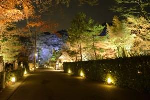 3.灯りと花の路(宝厳院前)_DSC2897